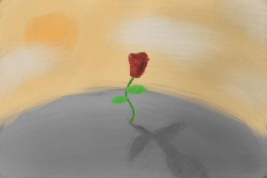 The Solitary Rose by serin113