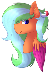 (AT) Cloudy Dash by MelodySweetheart