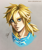 Breath of the Wild Link by Laine-O