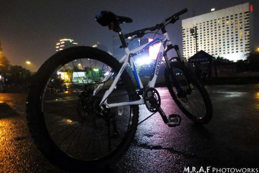 Polygon Premiere 4.0 Bicycle by MRAFPhotoworks