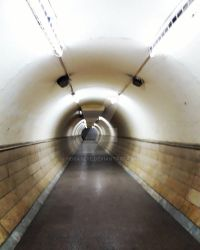 Tunnel by horaseye