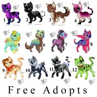 .:Animal Adopts - Closed:. by Toxyk-Melodi