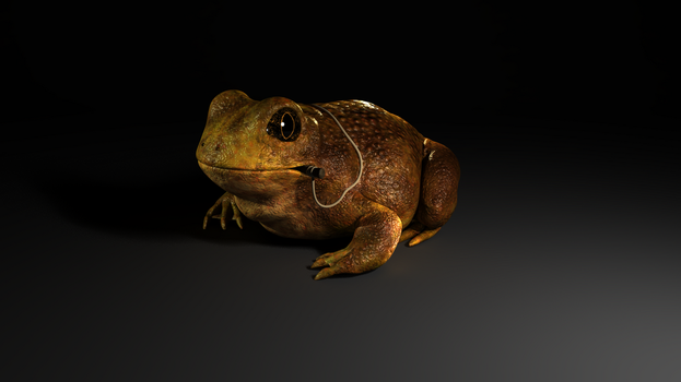 Toad_wip by 29thsep