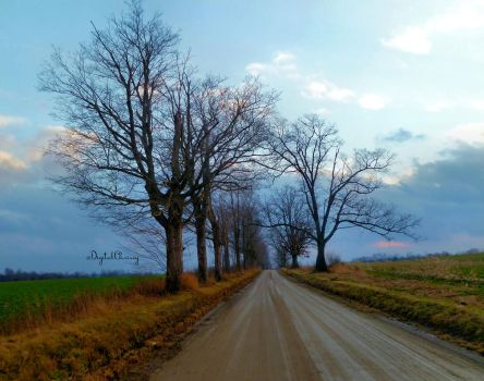 Typical roads by 1000900054
