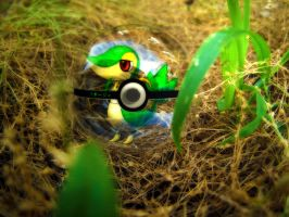 The Pokeball of Snivy by wazzy88