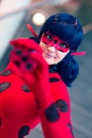 Ladybug - Coming after you by SoraPaopu