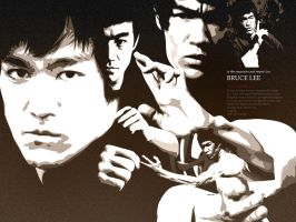 Vectorism v5 : Bruce Lee by jimmao