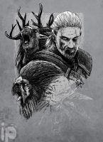 Witcher by inmaxpictures