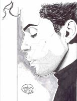 Prince inked with grey tones by StevenWilcox