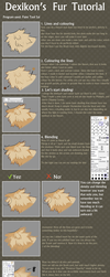Dexikon's Fur Tutorial by dexikon
