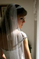 The Bride 2 by shutterfly-faerie