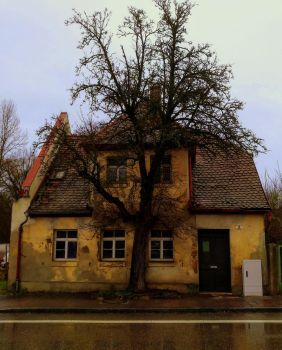 ruin and tree by Mittelfranke