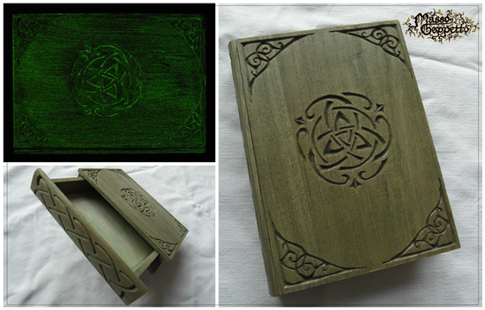 ENCHANTED BOOK (BOX) by MassoGeppetto