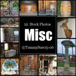 Miscellaneous by TammySue