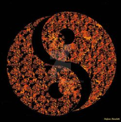 Fractal Ying - Yang by Book-Art