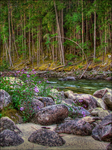 Flowers in the River Vale by wb-skinner