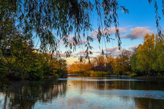 A walk in Crystal Palace Park by Mentos18