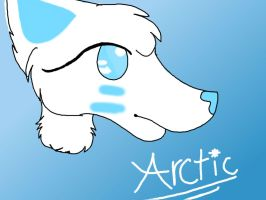 Arcies new design by RhapsodyDrawz