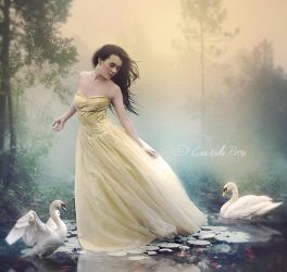 The Chant of Swans by Aeternum-designs