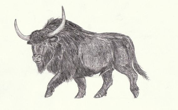 Bison priscus by Kahless28