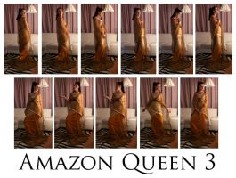 Amazon Queen 3 by syccas-stock