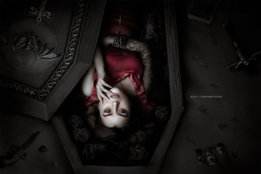 Coffin'Dorothy diarie by LINGDUMSTUDOG