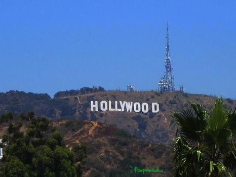 The Famous Hollywood sign by foxpawsd