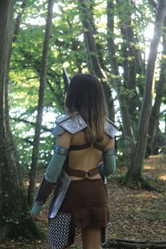 Aela the Huntress (1) by beopower