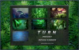 Indian Summer by turnpaper
