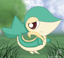 Ash's Snivy by jirachicute28