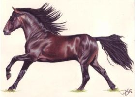 tut 1 step 10 finish by fascination-horse