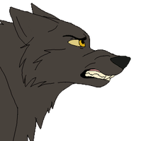 Wolf growling animation by Rolfwolf