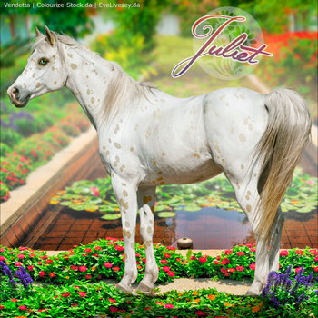 HEE Horse Avatar: Juliet by VendettaImaging