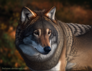 Eyes of the Forest by Ferluner