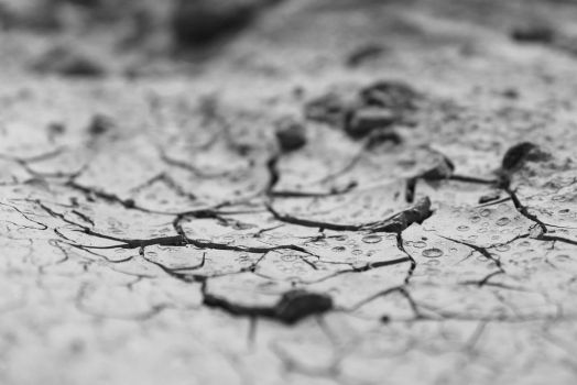 Rain and Drought by InfinityandOne