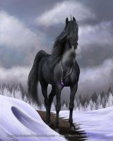 Christmas Day - Merry Christmas 2015 NT by Blood-Huntress