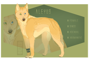 (P) - Main Ref 2016 by Schuis