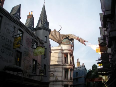 Wizarding World of Harry Potter (13) by xxtayce