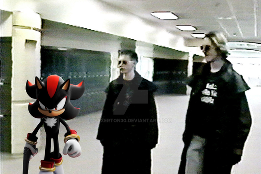 shadow the hedgehog is a good game by Faxerton30