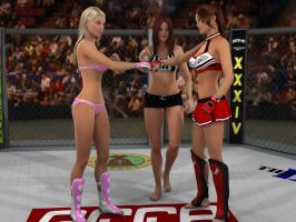 Hart vs Carter 2: The Calm Before... by PhoenixCreed