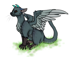 Trico by Marty-Draws