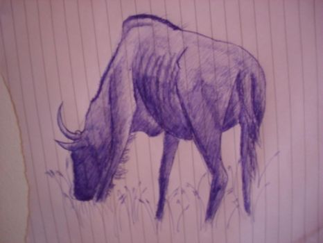 bison by nadinedavid