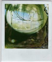 fisheye polaroid 001 by miaelizabethh