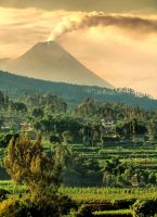 slope of Merapi by nooreva