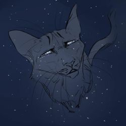 The crying night sky by blackbirdcat