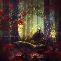 Sage of the Woods by tamaraR