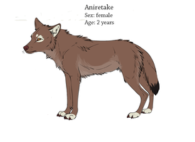Aniretake ref sheet by E-Metall