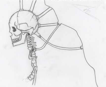 Skulls with Arc! by mcassone