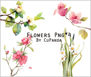 Flowers Png(3) by CuPanda