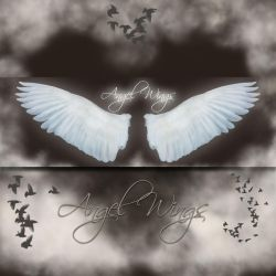 Angel Wings by cocacolagirlie